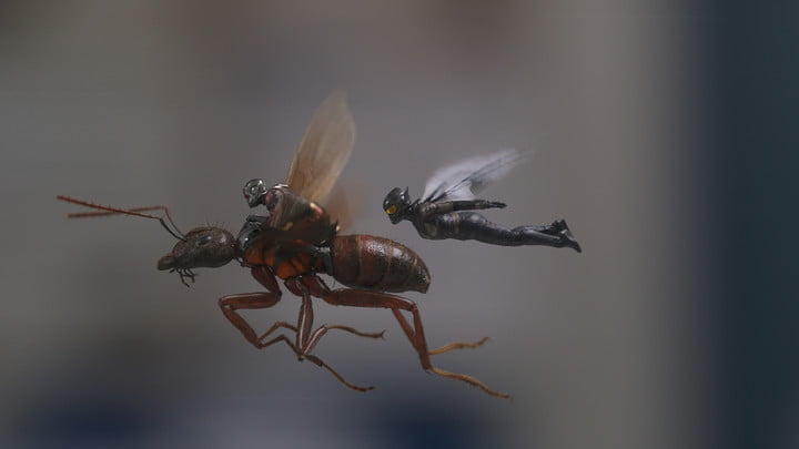 ant man and the wasp review 2