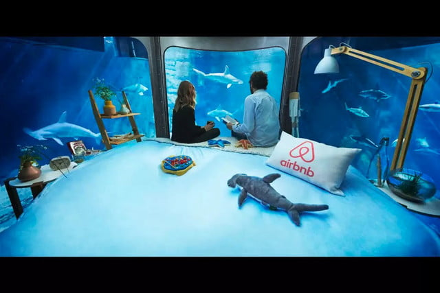 sleep underwater paris aquarium sharks airbnb de shark 006