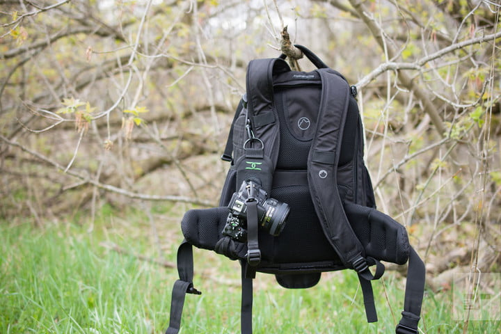 A backpack hanging on a branch sporting the Cotton Carrier StrapShot with a camera locked into the quick release slot