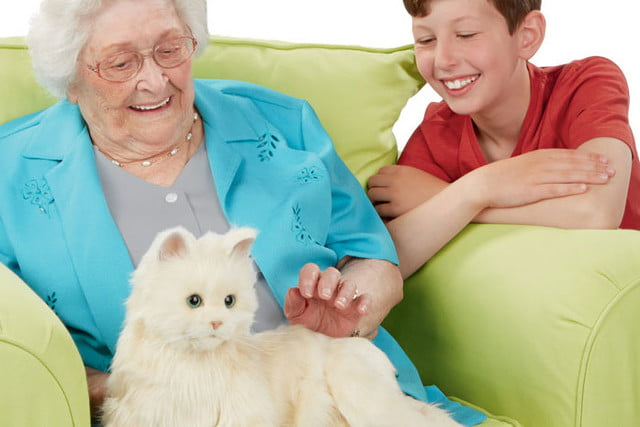 there are now robotic cats that serve as companion animals pet 7