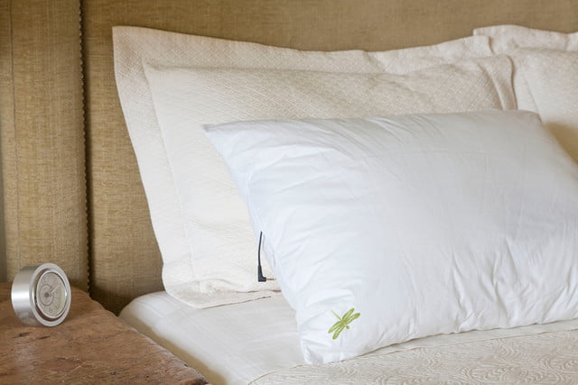 Dreampad pillow