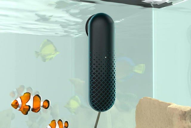 awesome tech you cant buy yet ossic fishbit luup  smart fish tank monitor