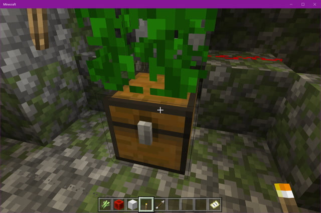 Minecraft Jungle Temple Chest